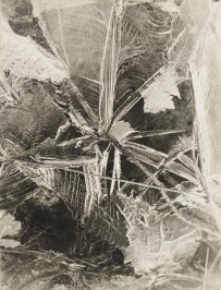 From the Cycle Frost Flowers [Miloš Spurný (1922-1979)]