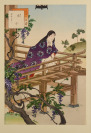 Verona, Berlin, [Two Books Dealing with Japanese Painting]